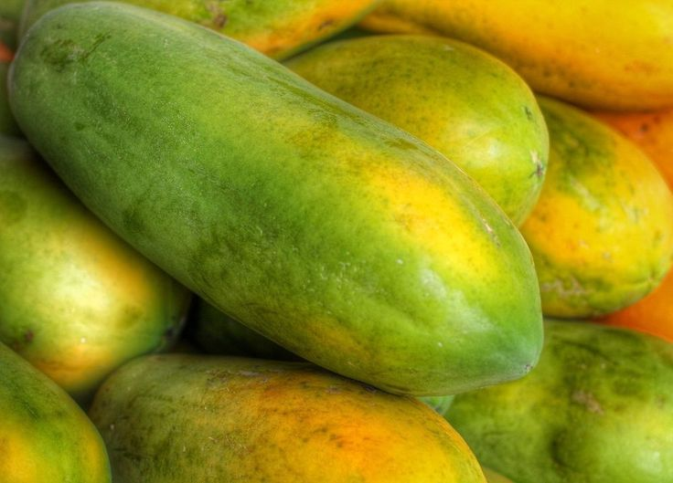 Small Tree Maximum Production long Orange Papaya Hybrid F1 Fruit Seeds 20 Seeds