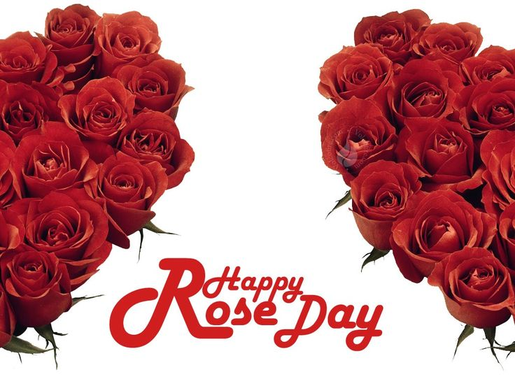 Check Out Happy Rose Day 2017 Animated Images and best Gifs Pictures
