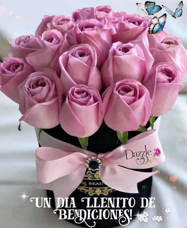 Flores Bonitas Para Cumplea S
