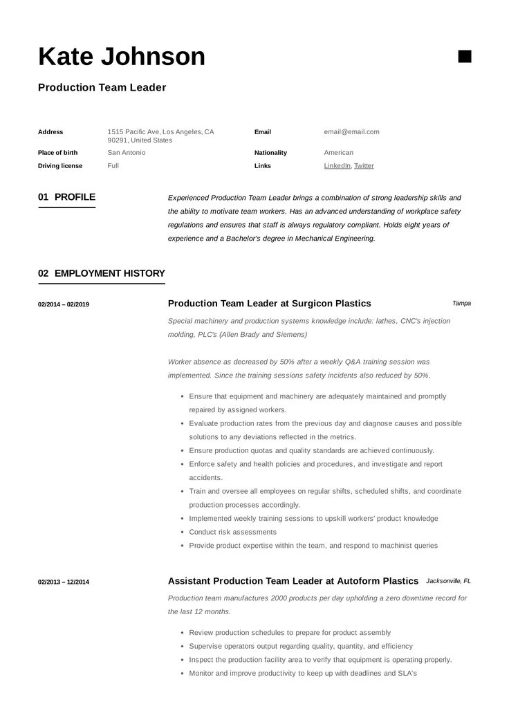 Production Team Leader Resume, template, design, tips