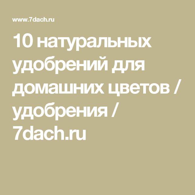 10 натуральных удобрений для домашних цветов / удобрения / 7dach.ru