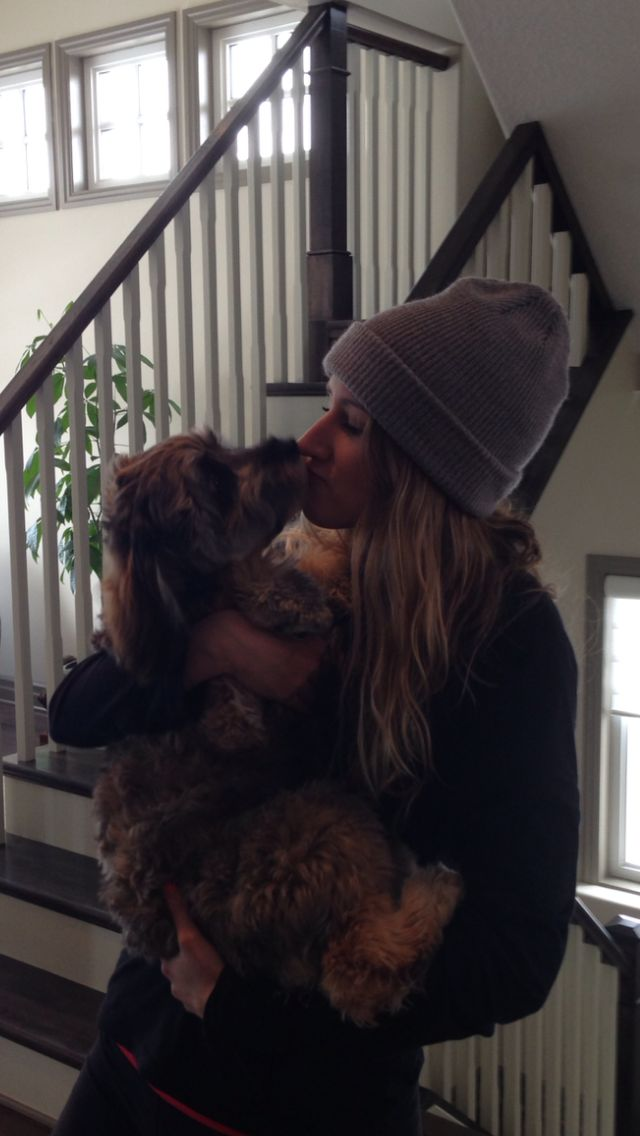 Kisses please xo #CockapooKisses @ 7 months #love #puppy