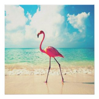 Pink Flamingo And Sandy Beach Colorful Photo Posters