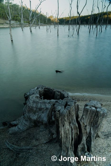 Lake Tinaroo, Tropical North Queensland, Australia http://www.yourtrails.com.au/