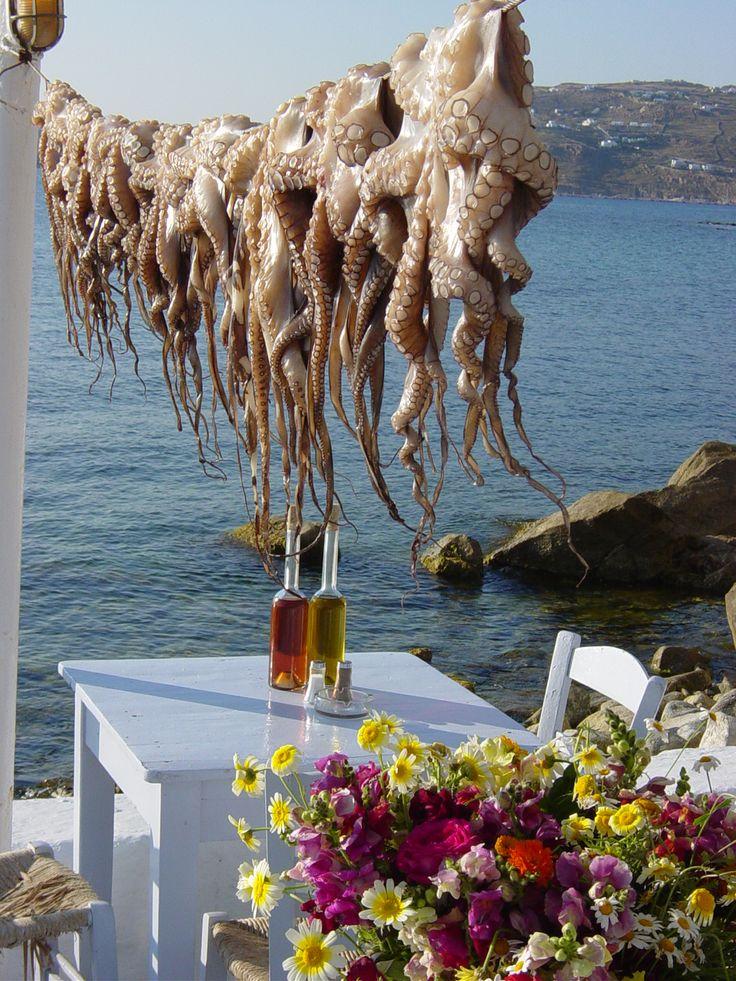 Octopus, Mykonos, Greece