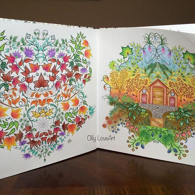 MagicalJungle MagicalJunglecoloringbook Coloringbook Coloringbookforadults Inkycoloringbook Lostocean Lostoceanfoloringbook Oceanoperdido