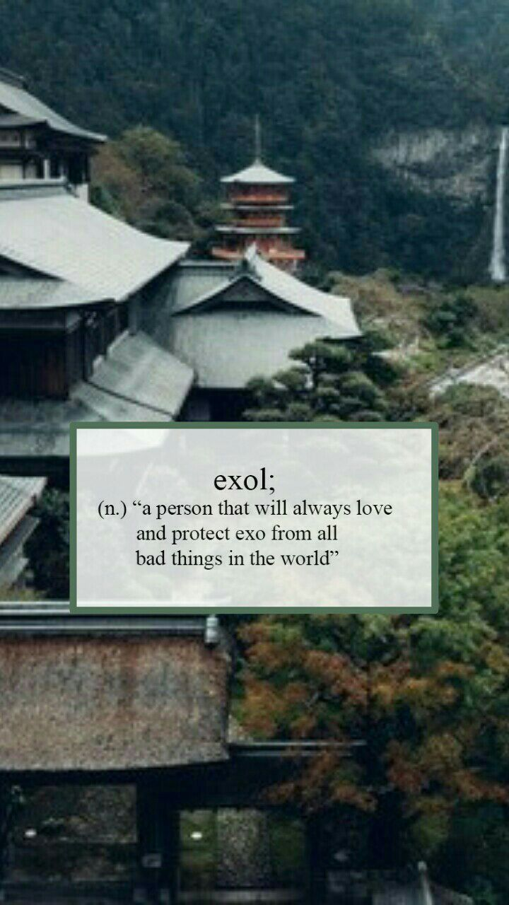 """""""Uma pessoa que sempre amará e protegerá exo de todas as coisas ruins do mundo."""" ( Exsceto as exo-lesada que só nasceram pra passar vergonha e serem ridículas.)"""