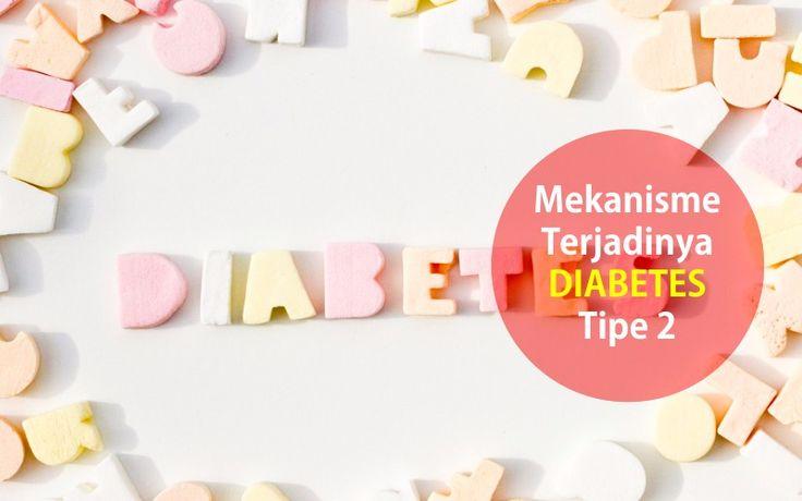 Diabetes tipe 2 memiliki mekanisme yang bekerja pada 4 organ tubuh. Organ tersebut yaitu : hepar (hati), Pankreas, sistem pencernaan, dan otot serta sel.