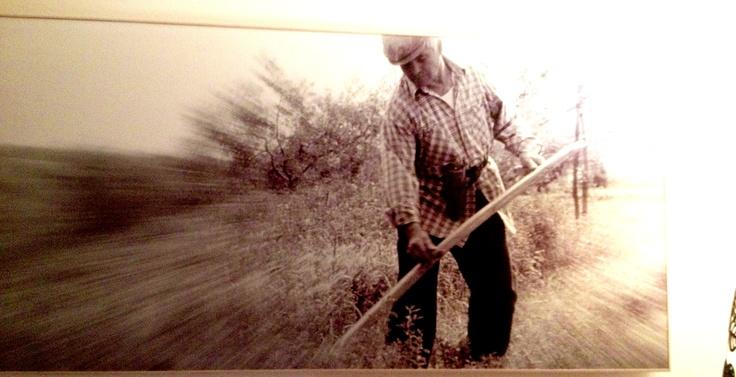 "Photo in Art Design Room Vecchi mestieri/old crafts: ""The Countryman""  Photographer:Tomassini Gianfranco"