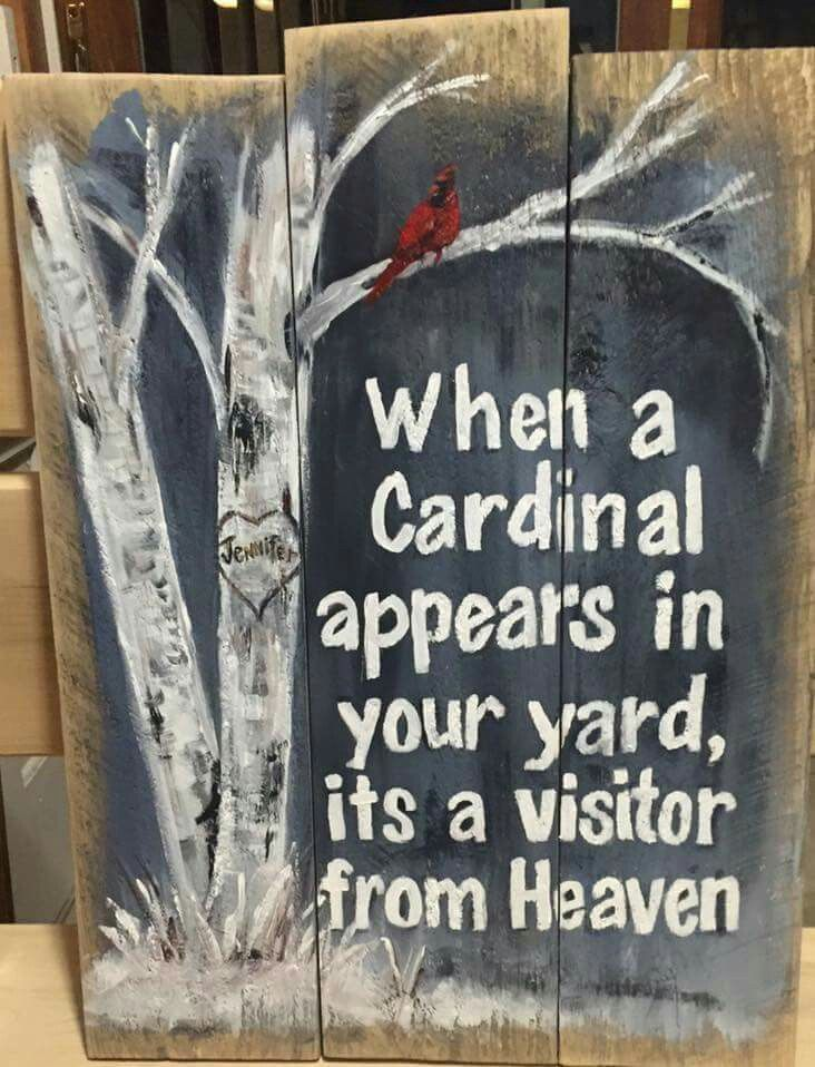 When A Cardinal Appears In Your Yard It S A Visitor