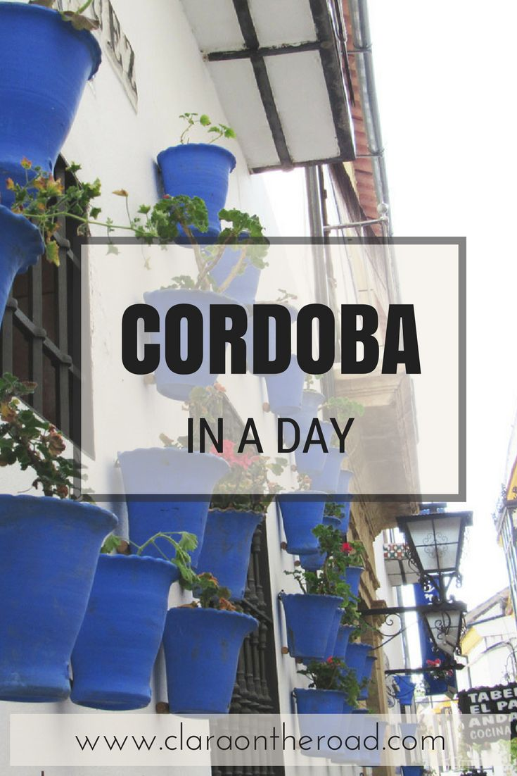 The perfect guide to spend a day in Cordoba, Spain