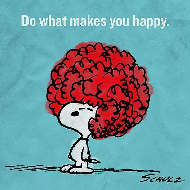 Do what makes you happy, Snoopy.
