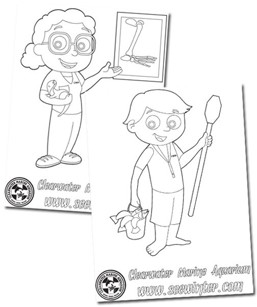 Coloring pages winter dolphin tale kid stuff pinterest for Winter the dolphin coloring pages