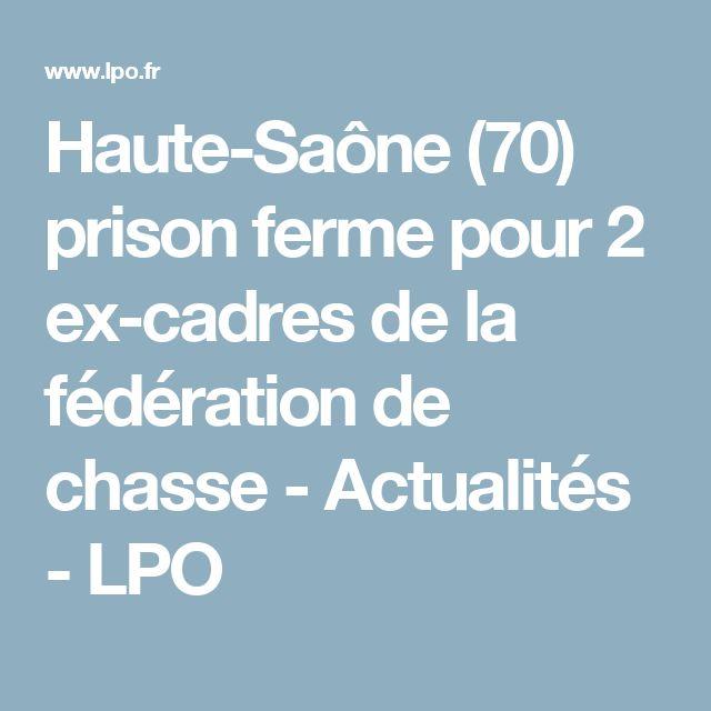 Haute-Saône (70) prison ferme pour 2 ex-cadres de la fédération de chasse - Actualités - LPO