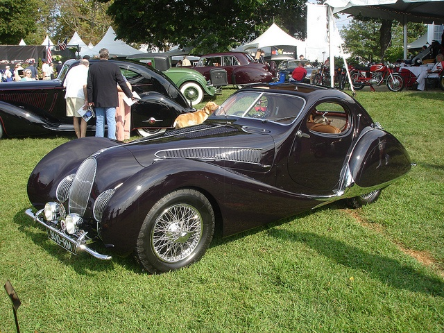 "Prewar France produced some of the most interesting, attractive cars the world will ever know. Prime example: The 1938 Talbot Lago T150C ""Teardrop"""