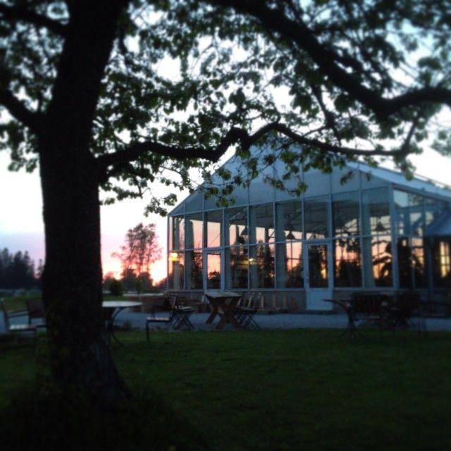 Det är en vacker, men mycket kall kväll. #frostrisk #krav #ekologiskt #eko #lillabjers