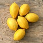 Meyer lemon preserves