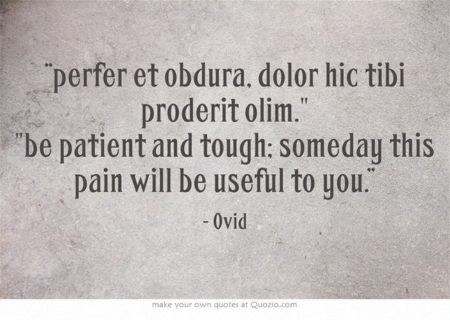 """""""perfer et obdura, dolor hic tibi proderit olim. be patient and tough; someday this pain will be useful to you."""""""