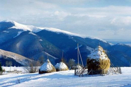 Iarna la Rogojel in Apuseni    sursa: modernism.ro