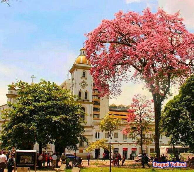 Capital musical de Colombia