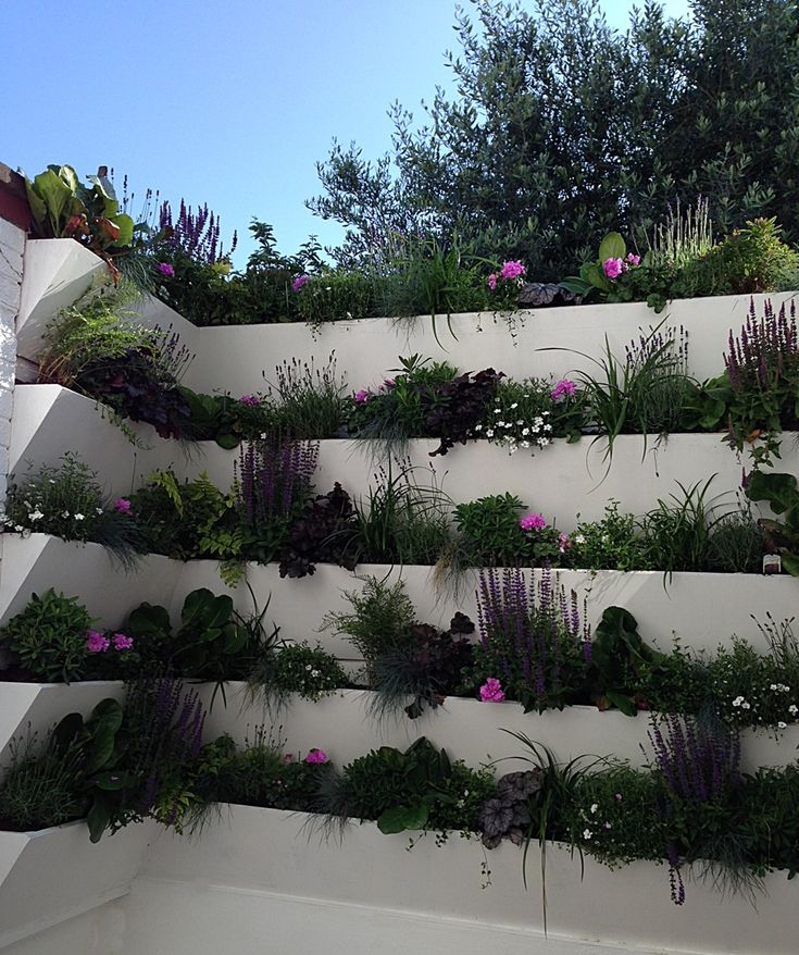 living garden wall london screen wall gardenslandscape designsgarden - Living Gardens Landscape Design