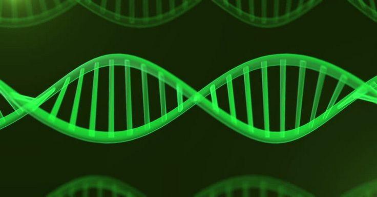 Nová věda vnímá DNA jako kvantovou vlnu. Co to vlastně znamená? A jak to ovlivní budoucí život? Přečtěte si více o objevech vědců.