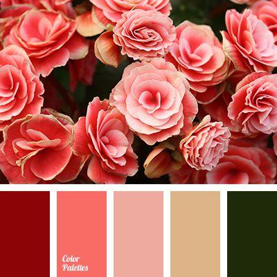 Color palette 3036