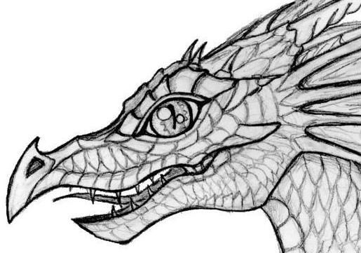 dragons in love coloring pages - photo#45