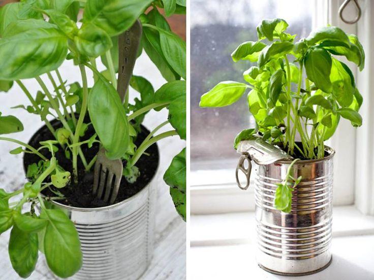 http://lortodimichelle.blogspot.ch/2012/05/monolocali-di-latta.html