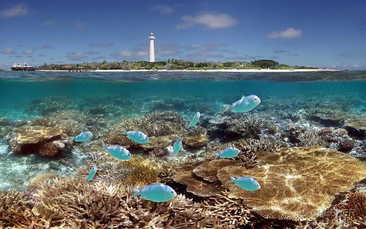 The reefs and Amedee Island MaryD Enterprises, Noumea