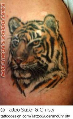 images about Tattoos on Pinterest | Tiger print tattoos Tiger tattoo ...