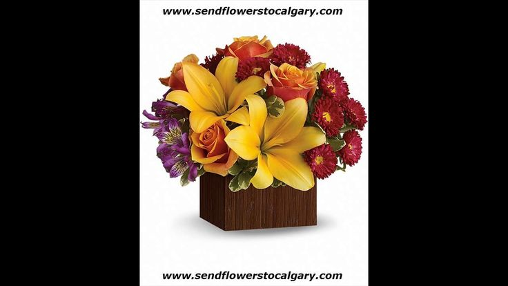 Envoyer des fleurs de Thurso Québec à Calgary en Alberta https://calgaryflowersdelivery.com | http://sendflowerstocalgary.com #EnvoyerDesFleursÀCalgary #SendFlowersToCalgary #FlowersInCalgary #calgary_flowers