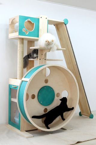 The ultimate cat toy!!! How cool would this be???