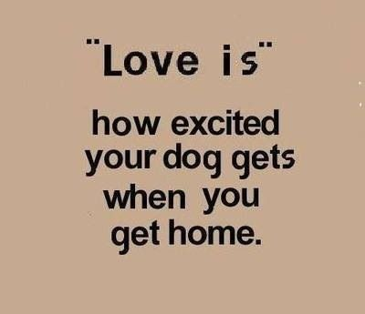 Love is... <<Cora>>♡