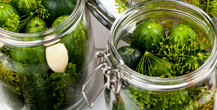 Ki ne szeretné a ropogós, házi ecetes uborkát? Nézd meg, hogy készítjük mi! :) #befozes #befott #uborka #ecet #ecetesuborka
