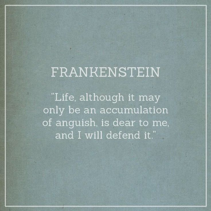 insanity in frankenstein Everything you ever wanted to know about victor frankenstein in frankenstein, written by masters of this stuff just for you.