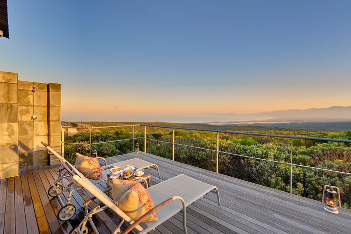 Grootbos Private Nature Reserve, situated 2 hours from Cape Town en route to Hermanus and the Garden Route boasts exquisite 5-star accommodation and extravagance in an idyllic haven.