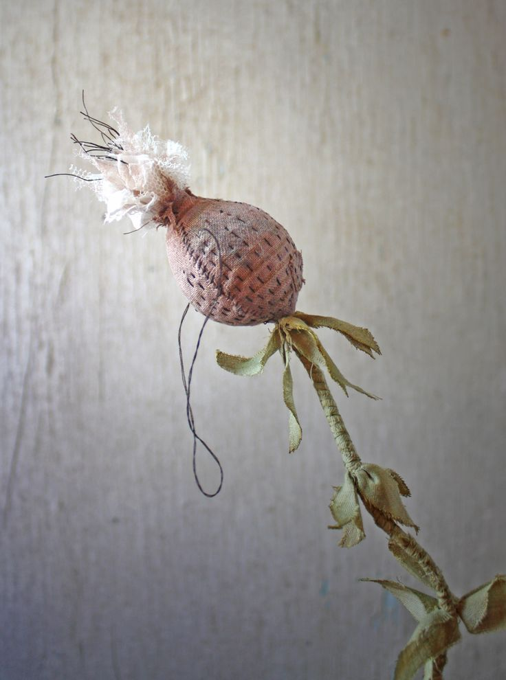 stitched seedpod Anne Wood. I like her work. She's doing 'botanical experimens'. Keep following