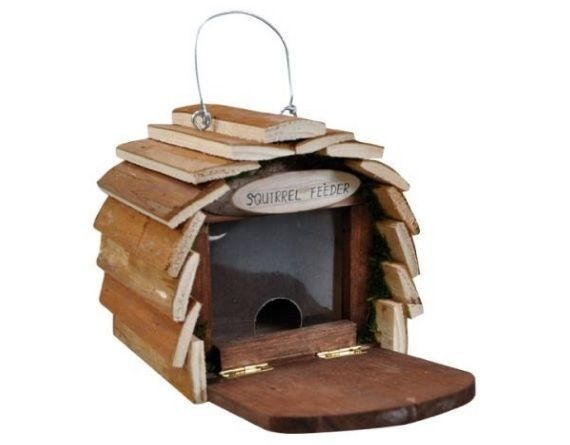 Guest House Squirrels Free Wooden Nest. AmazingGarden Guest House Wooden Realistic Natural designed housesfor NestingSquirrels, Birds or Bee as Guests. For people who respects animal`s freedom and especially birds & Squirrels but they likes their partner, in their yard or Garden or near their windows. | eBay!