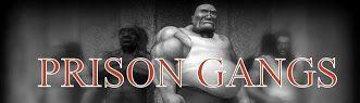 prison gangs | PRISON GANGS: suspected Aryan Brotherhood prison gang member got hold ...