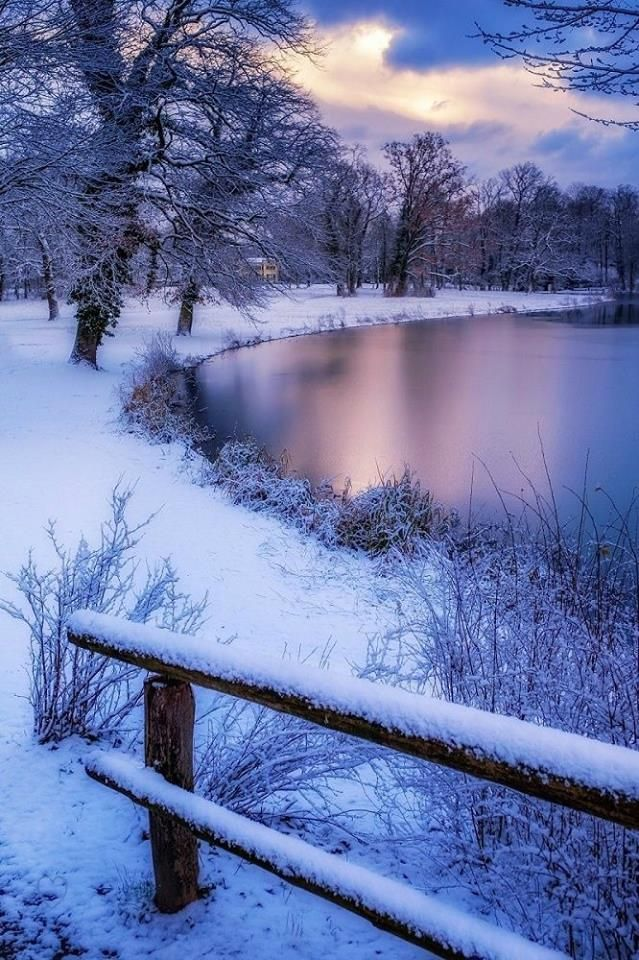 beautiful winter pictures nature