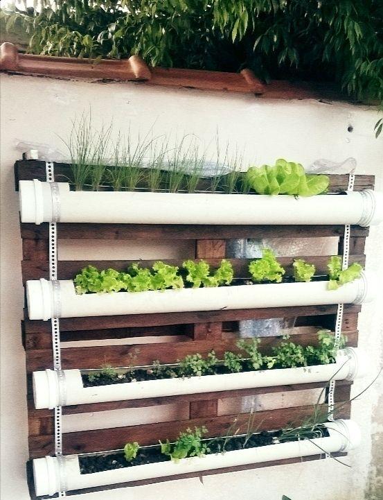 Horta de pallet, feita com canos de pvc ótima pra cultivar temperos