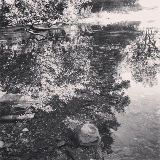 #jarama #river #retiendas #guadalajara