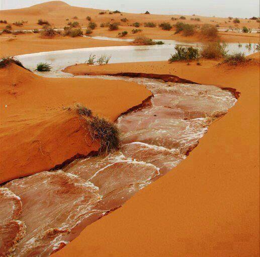 thealgerian:  Al Qarara, Algeria:
