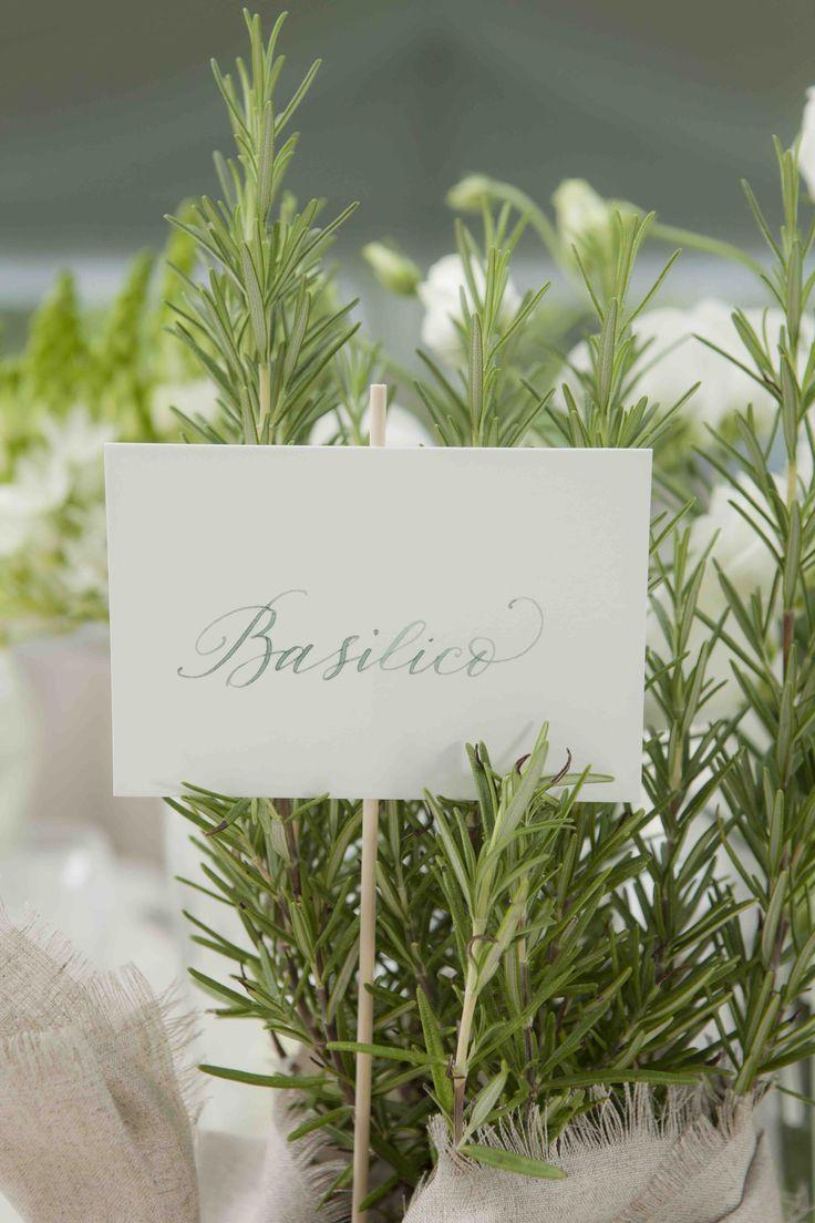 Centrotavola piantine aromatiche #matrimonio