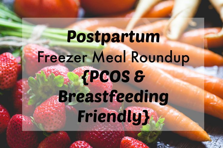 Freezer Meal Round-Up {PCOS and Breastfeeding Friendly}