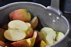 富士酢醸造元 飯尾醸造 - 会社案内 - 企業理念 青森の木村秋則さんの「奇跡のリンゴ」。丁寧に洗って仕込み開始です。