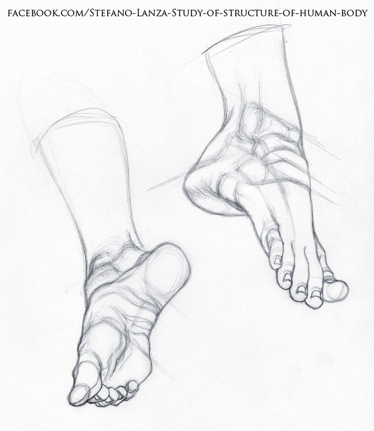 18 best Feet images on Pinterest | Drawings of people, Figure ...