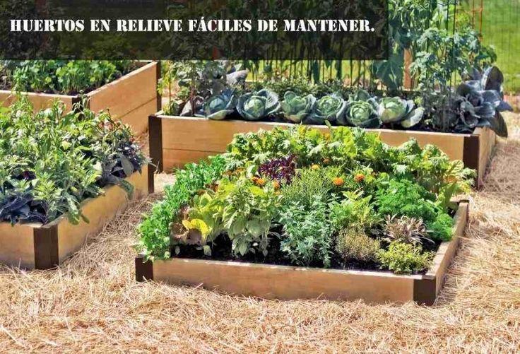 La idea que revolucionará nuestros huertos y jardines... ¡Descubre cómo hacerla!
