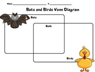 bats vs birds spiders pinterest best bats bat facts. Black Bedroom Furniture Sets. Home Design Ideas